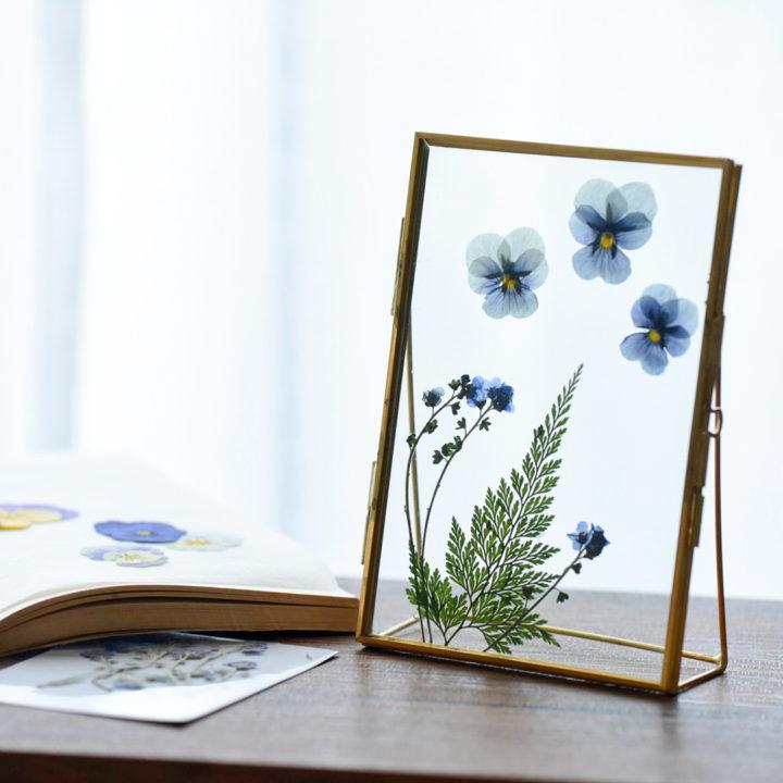 暮らしに彩りを。インテリアとしても楽しめる、押し花の飾り方の画像