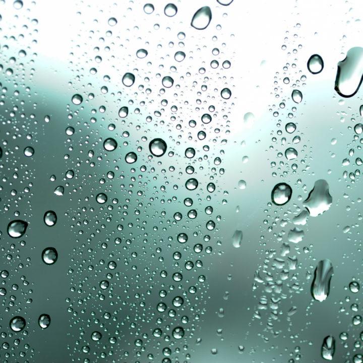 ソファのダニ退治方法_湿度や湿気を吸収
