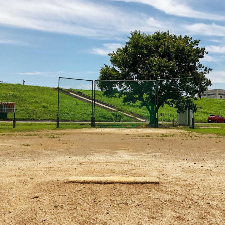 夏の高校野球。試合中止を受け丁寧に思い出す、私の暮らし・生活の画像