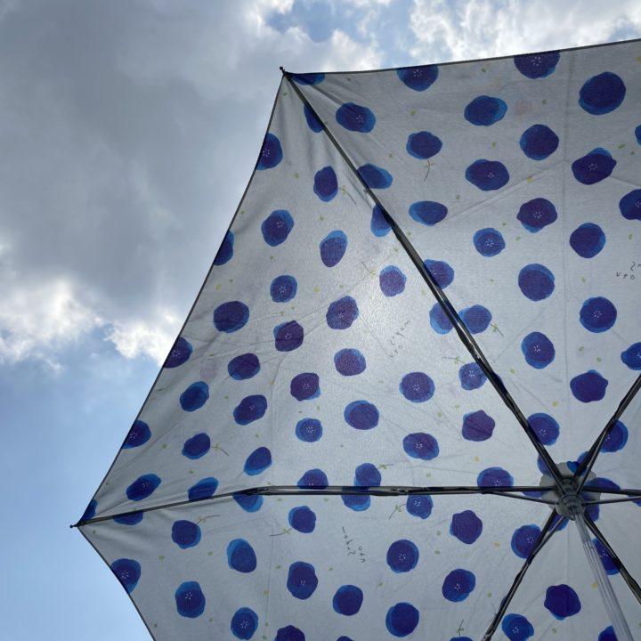 梅雨の終わりに出会ったかわいい傘。季節を楽しむ生活雑貨探しの画像