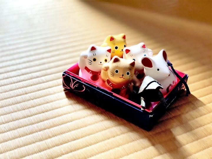 【縁起物の雑貨】集めたくなるかわいい招き猫インテリアとだるま市の画像