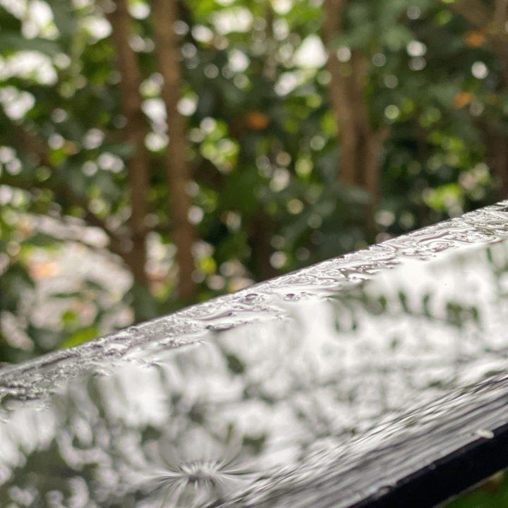 雨の日の生活と読書 暮らしと雨音に静かに耳を澄ませばの画像