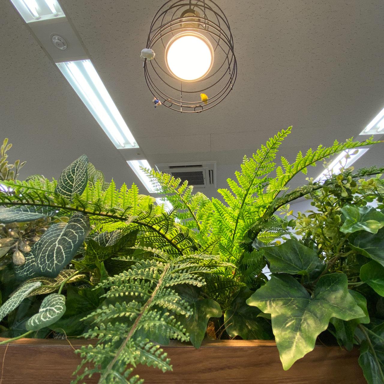 頭を上げたときのフェイクの観葉植物。僕が見た光景