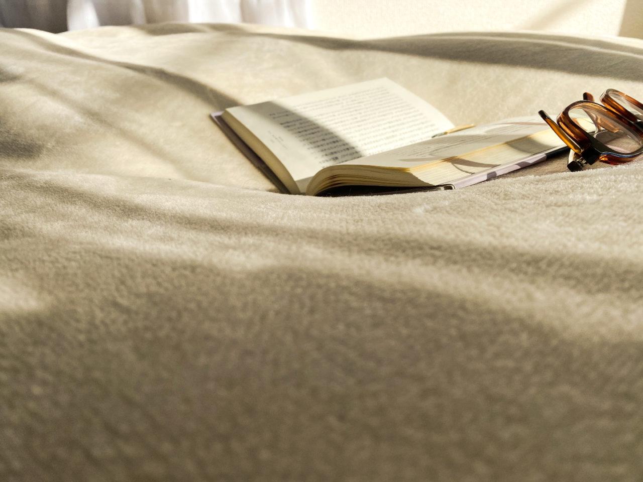 毛布にくるまっての読書をしている、その休憩中