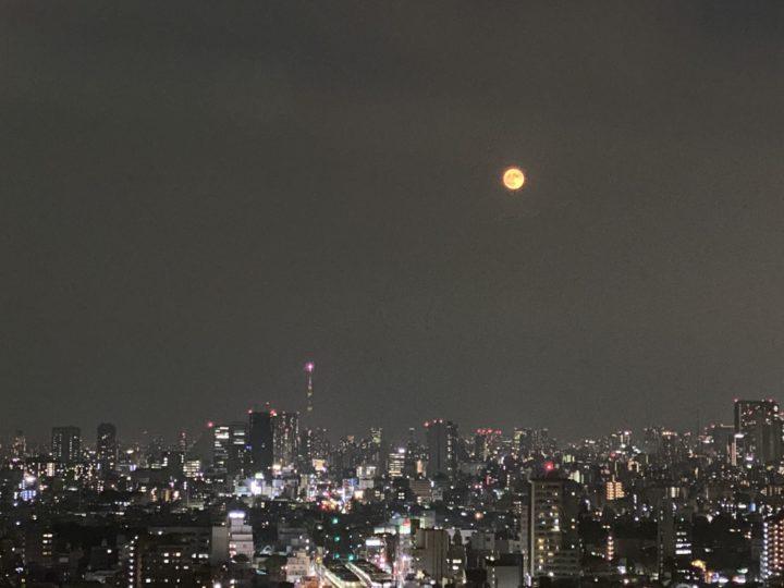 満月 夜更かし