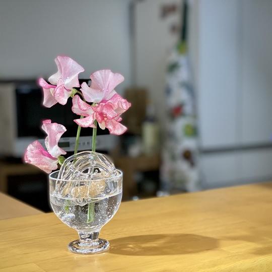 花 キッチン 飾り方