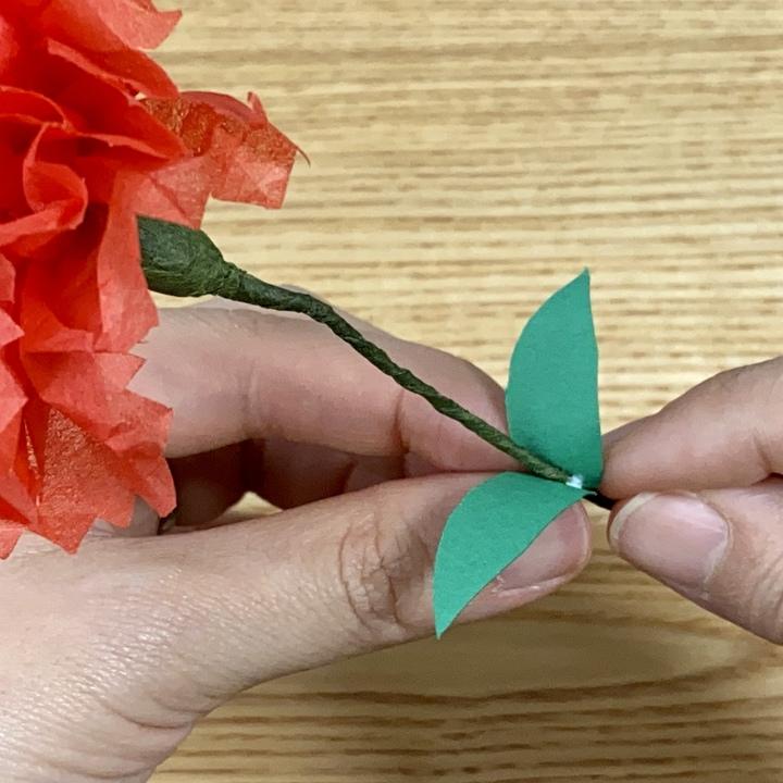 カーネーションの葉を作る画像