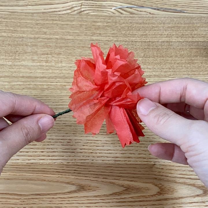 カーネーションの花びらを広げる