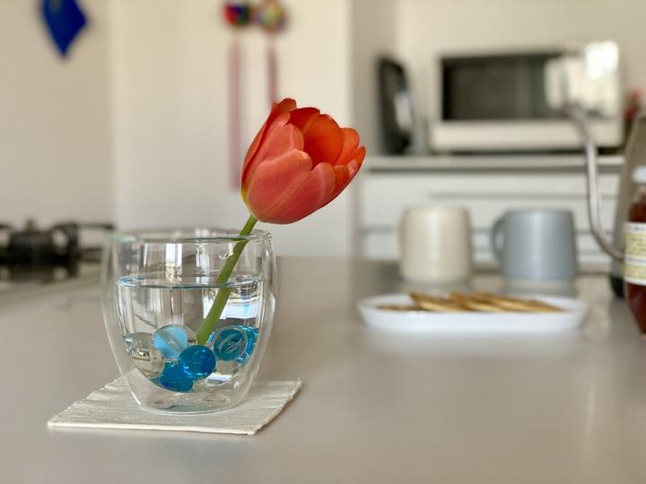 花瓶 代用 グラス