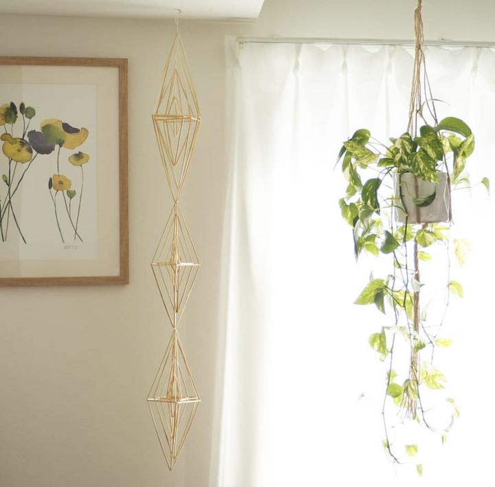 観葉植物の飾り方_吊るす_ポトス