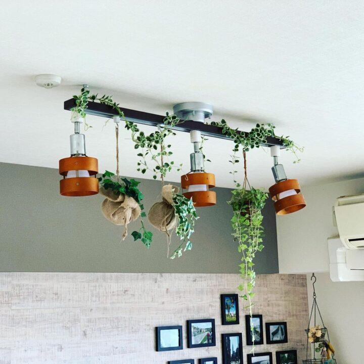 おすすめの吊るすフェイクグリーンとおしゃれな飾り方の画像