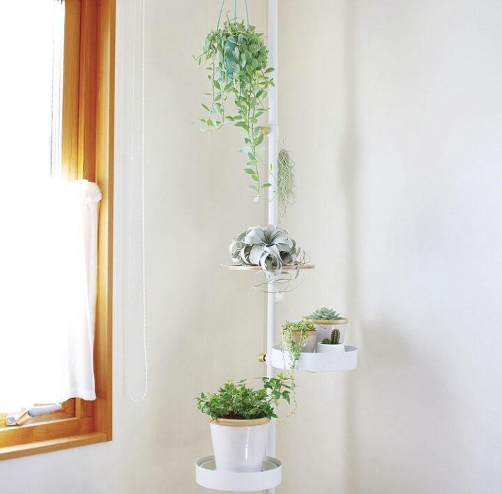 観葉植物の飾り方_吊るす_突っ張り棒_ドローアライン
