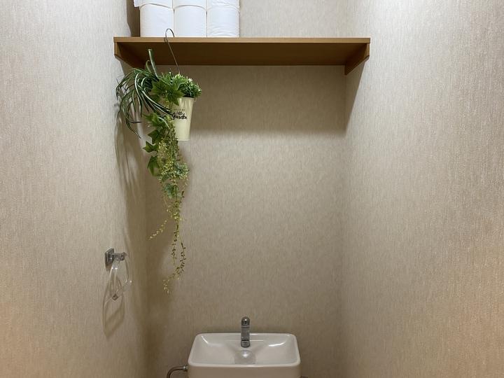 トイレのフェイクグリーン、ハンギングプラント