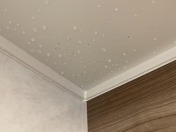 お風呂、浴室のカビと湿気